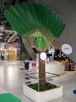 歓迎の大樹